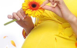 Гормоны в планировании беременности