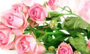 Флористический сюрприз: как сделать доставку цветов незабываемой